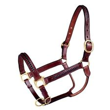 Brown Genuine Leather Horse Size Braided Overlay Halter Brass Hardware NEW Tack