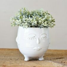 Mrs Pots Face Planter