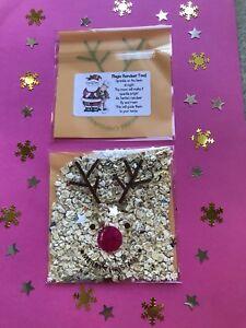 Santa's Xmas Magic Reindeer Food Christmas Eve Box Filler Glitter Dust Sparkle