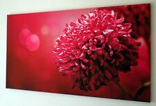LARGE RED PINK FLOWER CANVAS WALL ART PICTURE 18 X 32 INCH FRAMED PRINT