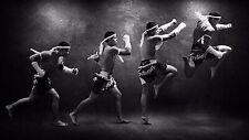 Muay Thai Kickboxing/Kenpo/Kempo/Taekwondo/Jujitsu/Hapkido/Kajukenbo/Krav Maga