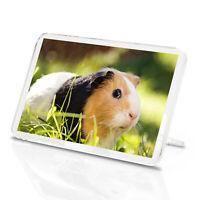 Guinea Pig Classic Fridge Magnet - Tri-Colour Cute Pet Mum Sister Gift #8268