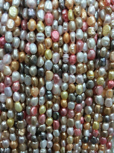 """5-6mm Multi-Coloured Freshwater Cultured Pearl Loose Beads 13""""AAA"""