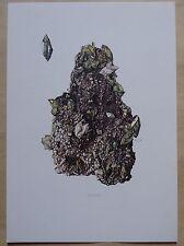 M127 - planche MINERAL MINERAUX : titanite