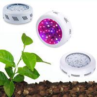 150W 200W 300W 700W LED Grow Light Kits Lamp for Plants Growing Full Spectrum