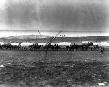 New 8x10 Civil War Photo: Ammunition Wagon Train at Coles Hill, Stevensburg