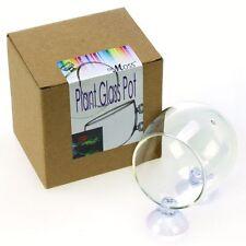 Aquarium Fish Tank Glass Live Plant Cup Pot Crystal Red Shrimp Holder Aquatic