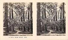 Stereoscope  View Camerascope - Cavanders Ltd - Peeps Into Many Lands Java