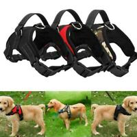 Pet Dog Adjustable Harness Vest Collar Training Safety Walk Out Hand Strap S-XL
