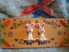 3d personalizzato 2 caratteri Coniglio Bunny/Porcellino D'India House Hutch segno di Pasqua