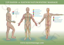 Raynor Naturopathic Massage Bands of Tension Poster