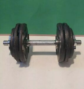 Adjustable Dumbbell With Cast Iron Steel Weights 25lbs of Plates - Weider