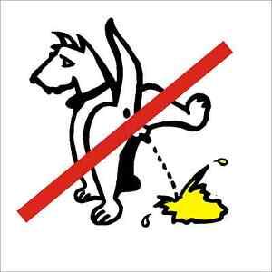 Hunde Verbot Schild pinkelnder Hund Kunststoff witterungsb.