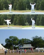 Dr. Chen's Tai Chi Qigong workout DVD Video level 3 / Tai Chi GongFa 301