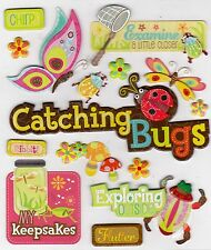 *CATCHING BUGS* K & Company Life's Little Occasions Stickers with Glitter