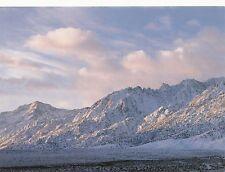 (16652) Postcard - California - Eastern Sierra Nevada, Inyo National Forest
