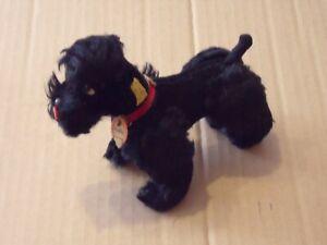 Steiff Hund Pudel Snobby schwarz, komplett mit KFS, 5314,06, Top Zustand, antik