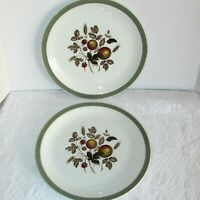 """HEREFORD DINNER PLATES 2 VINTAGE 10"""" ALFRED MEAKIN STAFFORDSHIRE ENGLAND PLATE"""