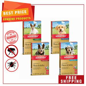 ADVANTIX for Dogs All Sizes Flea and Tick Treatment 6 Pipettes