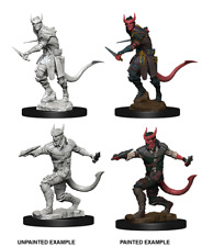 D&D Nolzur's Marvelous Unpainted Miniatures: Tiefling Male Rogue