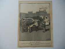 ORIGINAL SHEET from Magazine Youth 1904 Weisgerber Dessau Slaughterhouse B507