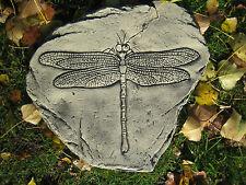 ammonite dragonfly stepping stone
