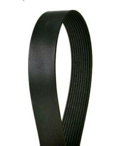 Serpentine Belt-Eng Code: 3406, Caterpillar Continental Elite 4100510