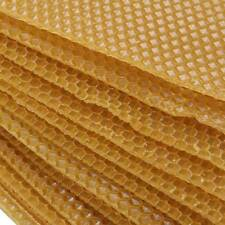 30Pcs Honeycomb Comb foundation for Apis mellifera Beehive Wax Frames Beekeeping