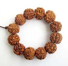 Rudraksha Bodhi Seed Beads Tibetan Buddhist Prayer Wrist Mala