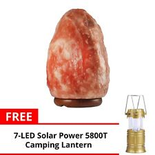 Keimav Natural Shape Himalayan Salt Lamp Light Dimmer w/ Camping Lantern (Gold)