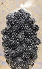 Bio Balls Netted Bag of 100 Balls(6 litres) Biological Filtration +FREE SHIPPING
