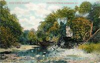 Kankakee Illinois ILL Rock Creek Ravine pm 1908 Postcard