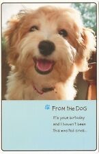 American Greetings Birthday Card: From the Dog-I Haven't Been This Excited Since