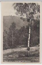 (30045) Foto AK Bad Flinsberg (Swieradow-Zdroj), Hasenstein, 1931