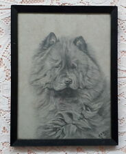 More details for head of chow chow dog 1926 pencil drawing