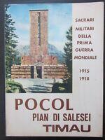 POCOL PIAN DI SALESEI TIMAU Sacrati militari prima guerra mondiale Cadore Carnia
