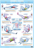 Exercise Training Chart Core And Abdomen Muscles Exercise Poster