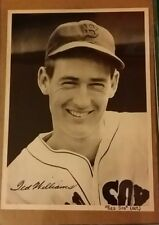 TED WILLIAMS VINTAGE 7X9 TEAM ISSUE PHOTO