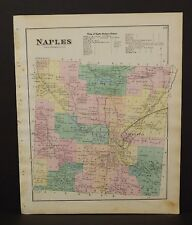 New York Ontario County Map Naples Township 1874 W15#25