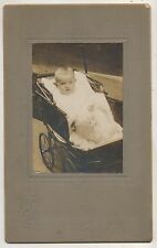 Cute Baby in Stroller with Toy Puppy Dog Doll Antique Photograph