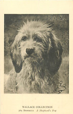 "ROSA BONHEUR ARTIST ""A SHEPHERD'S DOG"" (WALLACE COLLECTION) #365 POSTCARD"