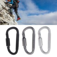 Climbing Tools D Shaped Camping Carabiner Aluminum Alloy Locking Hook Ring Key