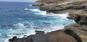 Pristine, Tropical Land in Hawaii.  The Retirement Property Of Your Dreams