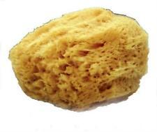 Mehron Natural Sea Sponge Makeup Applicator