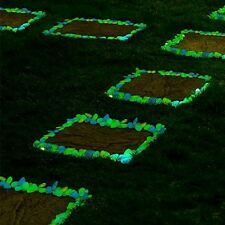 Babz 100 Man-Made MIXED Colours Glow in the Dark Pebbles Stone for Garden Walkwa