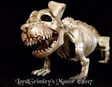 NEW 2017 Bonez Little Puppy Skeleton Halloween Prop Horror Undead Decoration Dog
