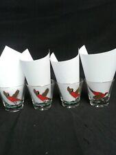 4 Pheasant Hunting Gold Rim Drinking Glasses