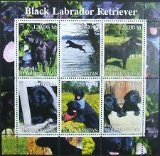 Turkmenistan-Dogs-Blak Labrador-1 M/Sh.2001.MNH**TU PLR 33