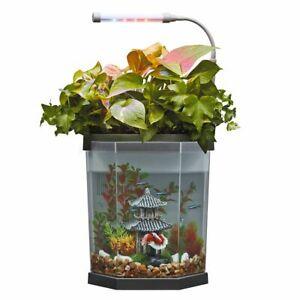 Top Fin® Aquaponics 2 Gallon Desk Aquarium Size: 2 Gal - BRAND NEW!