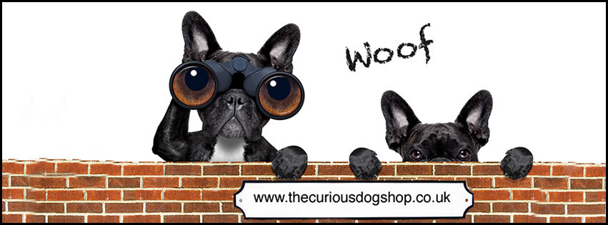 The Curious Dog Shop
